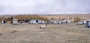 Base Camp - Rocky Mountain Vizsla Club's Inaugural Walking Field Trial